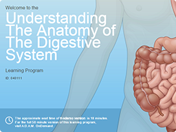 20 captivating samples of interactive e learning courses the anatomy of the digestive system toneelgroepblik Images